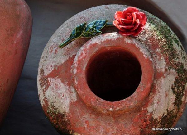 Urn met majolica roos